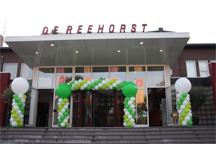 Combinatie van ballonnenslinger en ballonnenpilaren bij ingang evenement